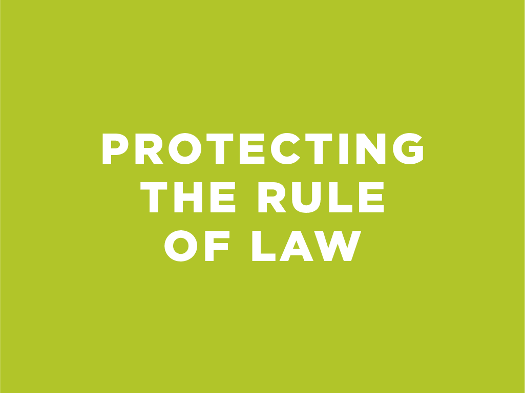 Protecting the Rule of Law